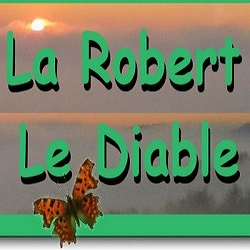 08/03/2020 Trail La Robert le Diable